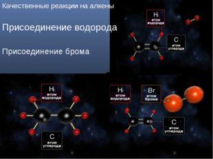 Клок Г.Д. учитель химии г.Нижневартовск Качественные реакции на алкены Присое
