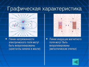 Графическая характеристика Линии напряженности электрического поля могут быть