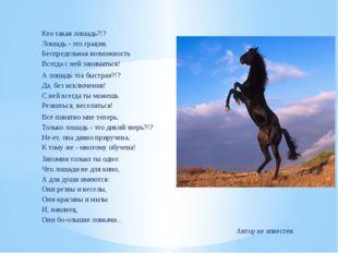 Кто такая лошадь?!? Лошадь - это грация, Беспредельная возможность Всегда с