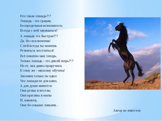 Кто такая лошадь?!? Лошадь - это грация, Беспредельная возможность Всегда с...