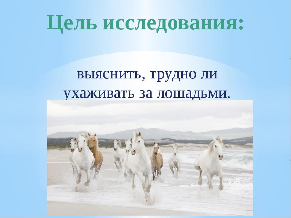 выяснить, трудно ли ухаживать за лошадьми. Цель исследования: