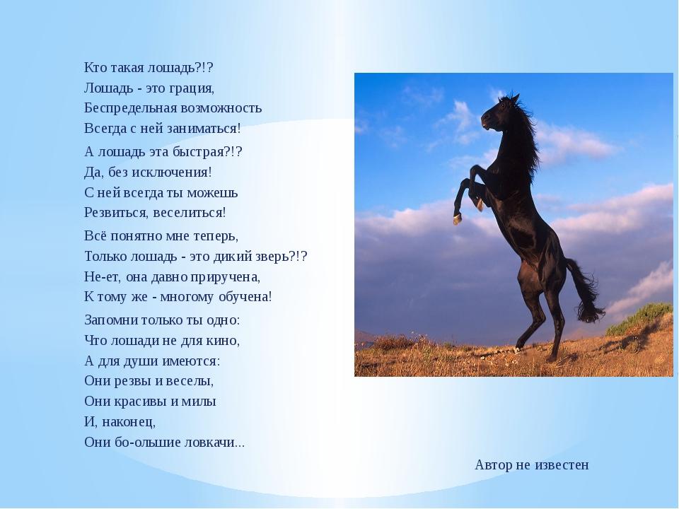 стихи про конный спорт до слез выпивают