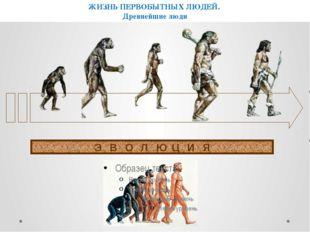 ЭВОЛЮЦИЯ ЖИЗНЬ ПЕРВОБЫТНЫХ ЛЮДЕЙ. Древнейшие люди