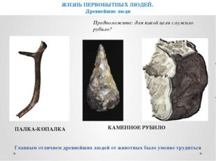 ПАЛКА-КОПАЛКА КАМЕННОЕ РУБИЛО Главным отличием древнейших людей от животных б