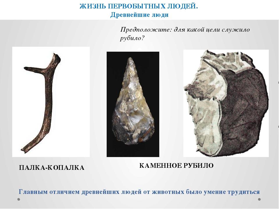 ПАЛКА-КОПАЛКА КАМЕННОЕ РУБИЛО Главным отличием древнейших людей от животных б...