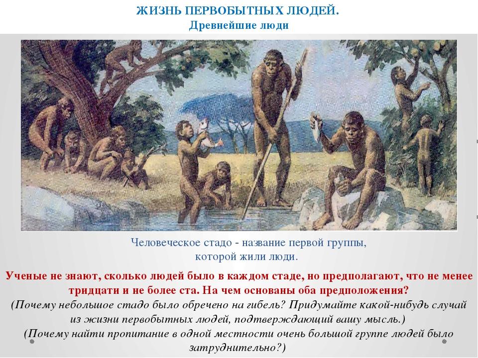 ЖИЗНЬ ПЕРВОБЫТНЫХ ЛЮДЕЙ. Древнейшие люди Человеческое стадо - название первой...