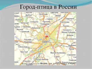 Город-птица в России