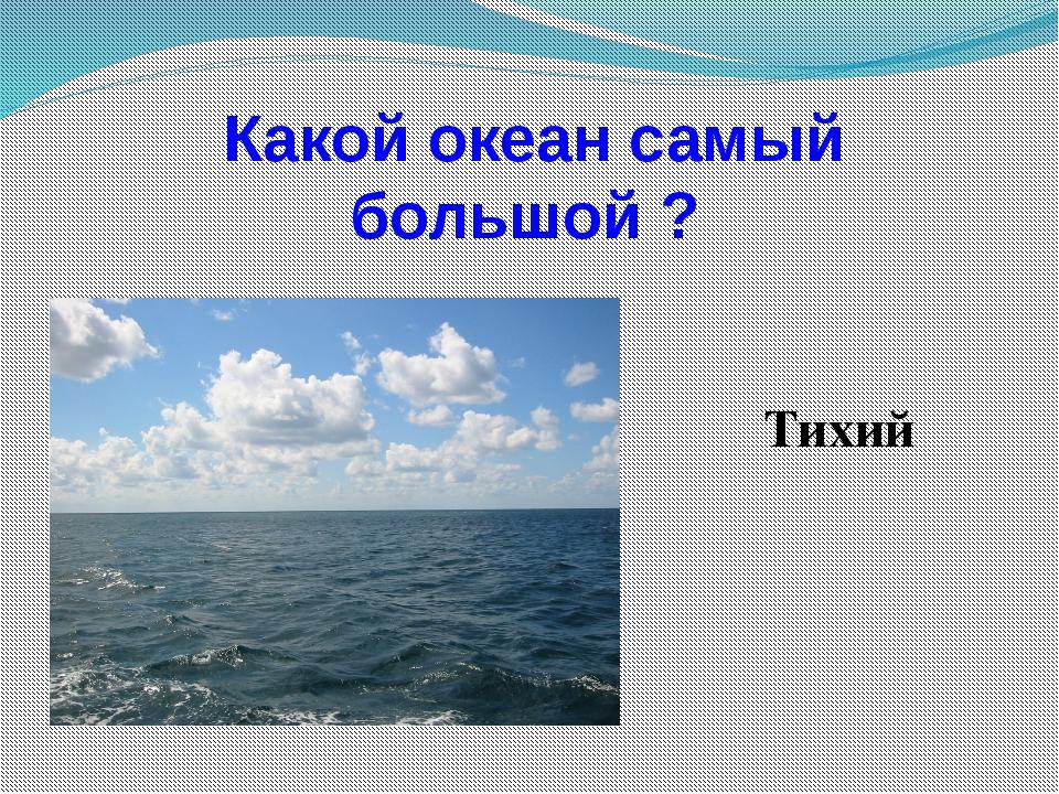 Какой океан самый большой ? Тихий
