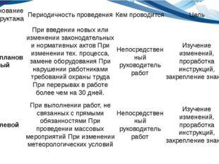именование инструктажа Периодичность проведения Кем проводится Цель Внепланов