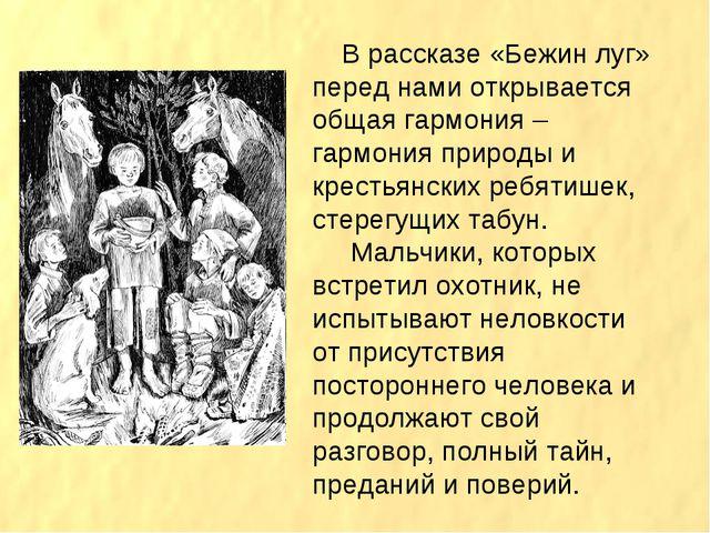В рассказе «Бежин луг» перед нами открывается общая гармония – гармония прир...