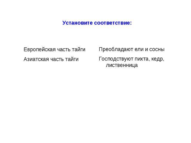 Европейская часть тайги Азиатская часть тайги Установите соответствие: Преобл...