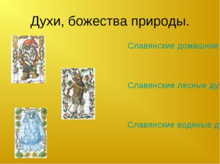Духи, божества природы. Славянские водяные духи. Славянские домашние духи. Сл