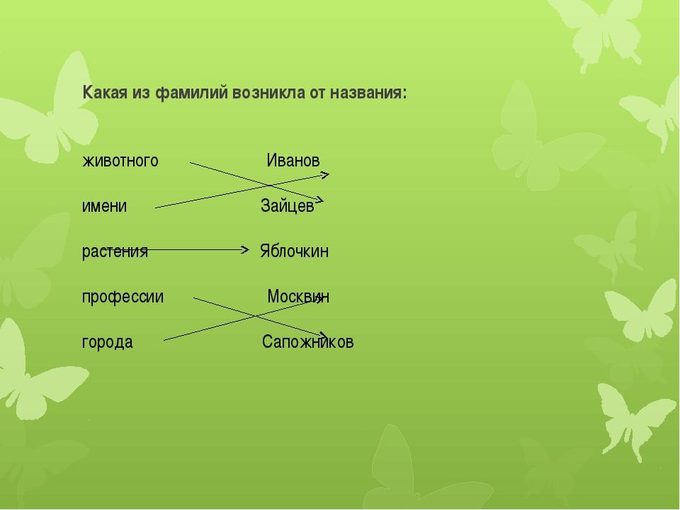 Какая из фамилий возникла от названия: животного Иванов имени Зайцев растения...