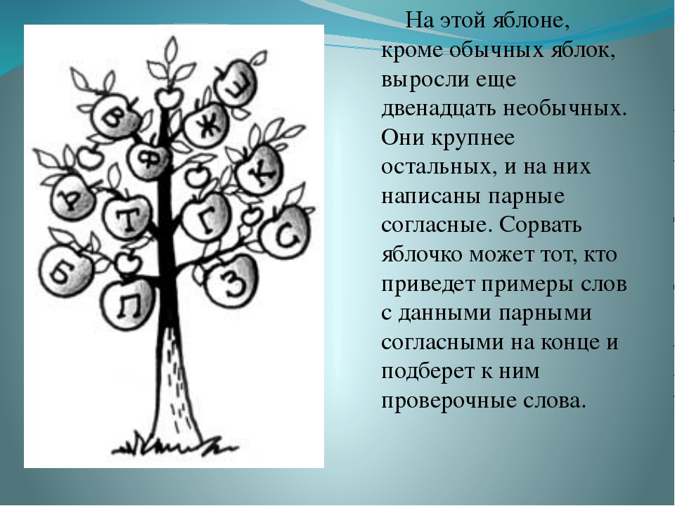 На этой яблоне, кроме обычных яблок, выросли еще двенадцать необычных. Они к...
