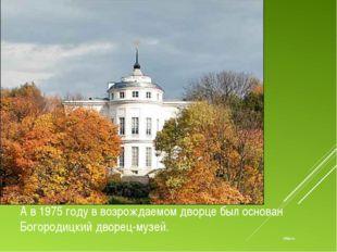 offtop.ru А в 1975 году в возрождаемом дворце был основан Богородицкий дворец