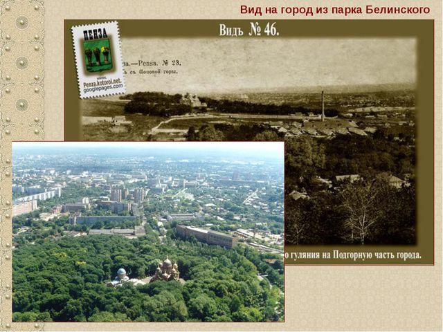 Вид на город из парка Белинского