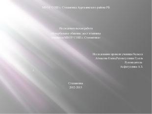 МБОУ СОШ с. Степановка Аургазинского района РБ     Исследовательская раб