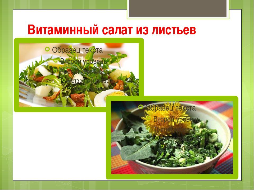Витаминный салат из листьев