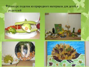 Конкурс поделок из природного материала для детей и родителей
