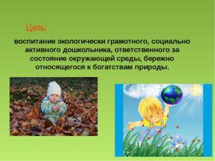 Цель: воспитание экологически грамотного, социально активного дошкольника, от