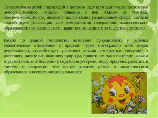 Ознакомление детей с природой в детском саду проходит через постоянное непоср