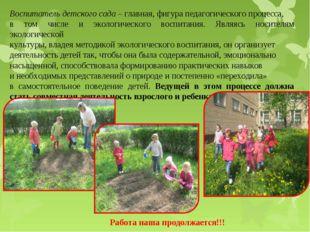 Воспитатель детского сада– главная, фигура педагогического процесса, в том ч