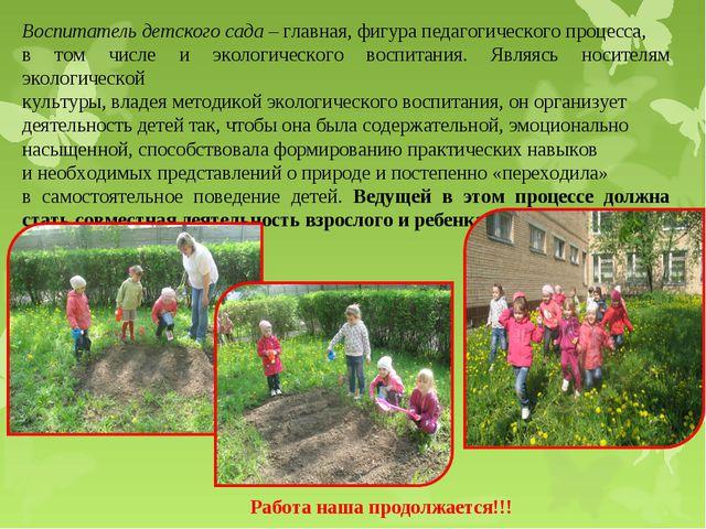 Воспитатель детского сада– главная, фигура педагогического процесса, в том ч...