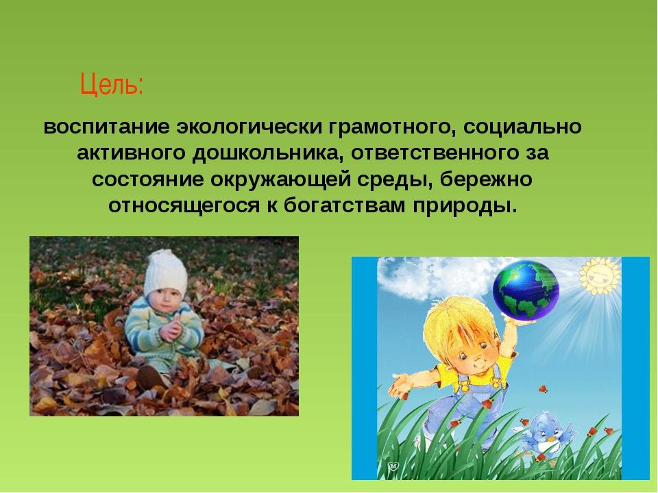 Цель: воспитание экологически грамотного, социально активного дошкольника, от...