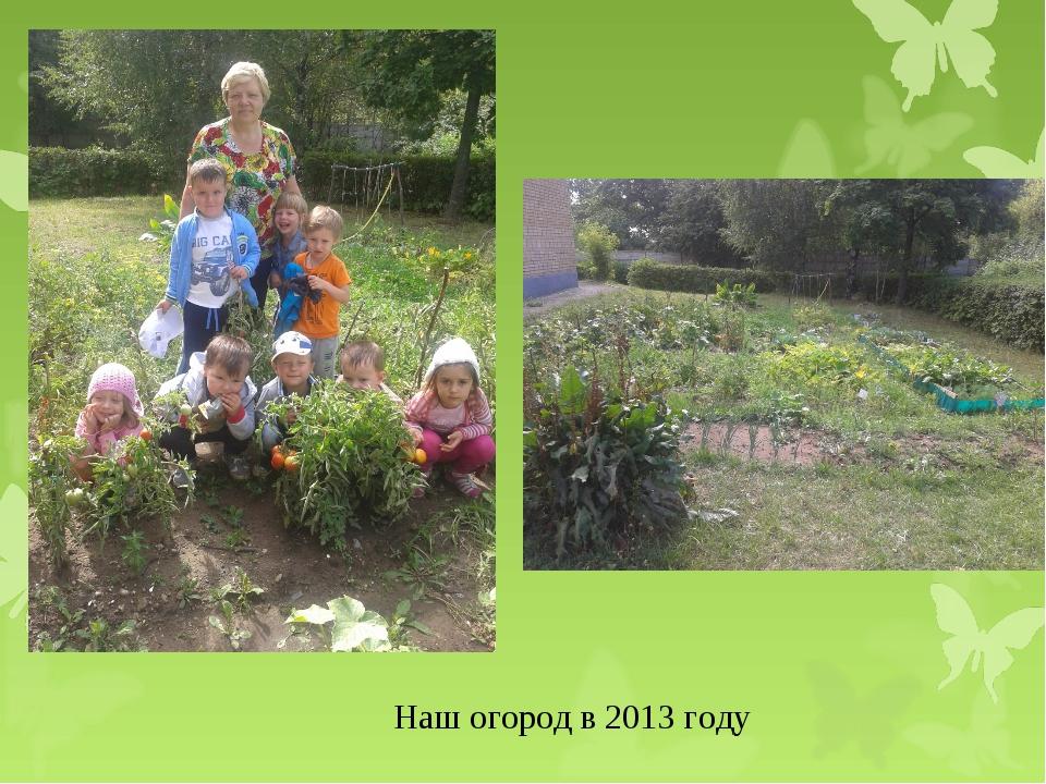 Наш огород в 2013 году