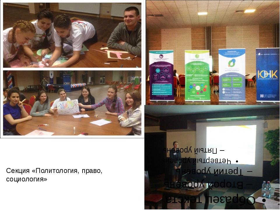 Секция «Политология, право, социология» Что было на конференции? Интеллекту...