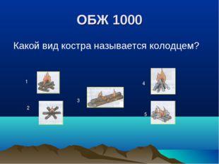 ОБЖ 1000 Какой вид костра называется колодцем? 1 2 3 4 5
