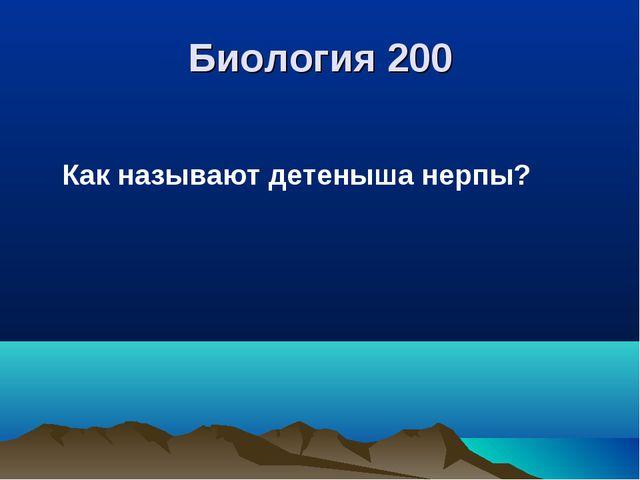 Биология 200 Как называют детеныша нерпы?