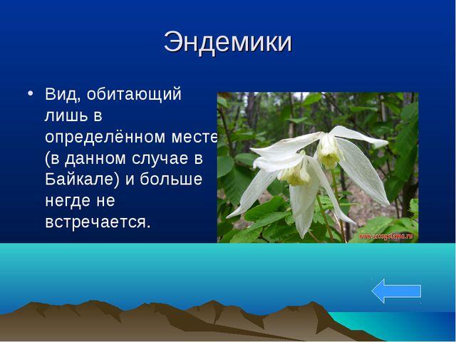 Эндемики Вид, обитающий лишь в определённом месте (в данном случае в Байкале)...