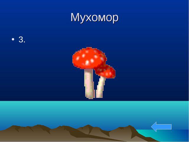 Мухомор 3.