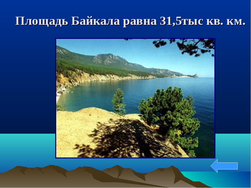 Площадь Байкала равна 31,5тыс кв. км.
