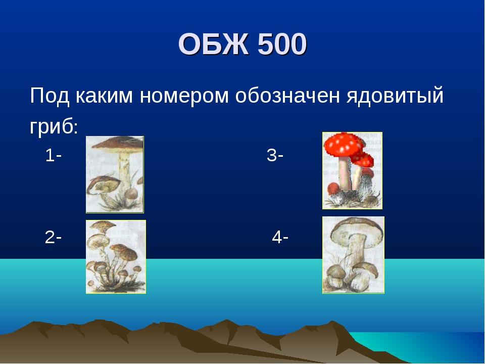 ОБЖ 500 Под каким номером обозначен ядовитый гриб: 1- 3- 2- 4-