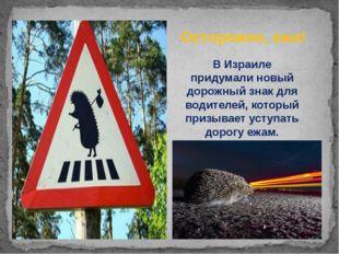 ВИзраиле придумали новый дорожный знак для водителей, который призывает усту
