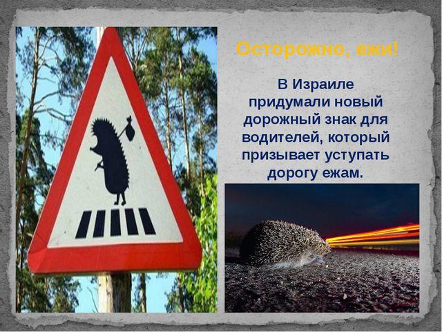 ВИзраиле придумали новый дорожный знак для водителей, который призывает усту...