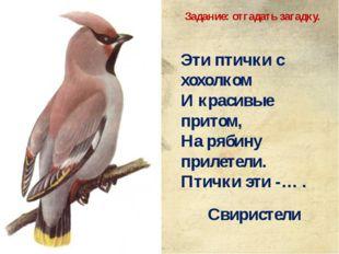 Эти птички с хохолком И красивые притом, На рябину прилетели. Птички эти -… .
