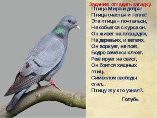 Птица Мира и добра! Птица счастья и тепла! Эта птица – почтальон, Не собьется