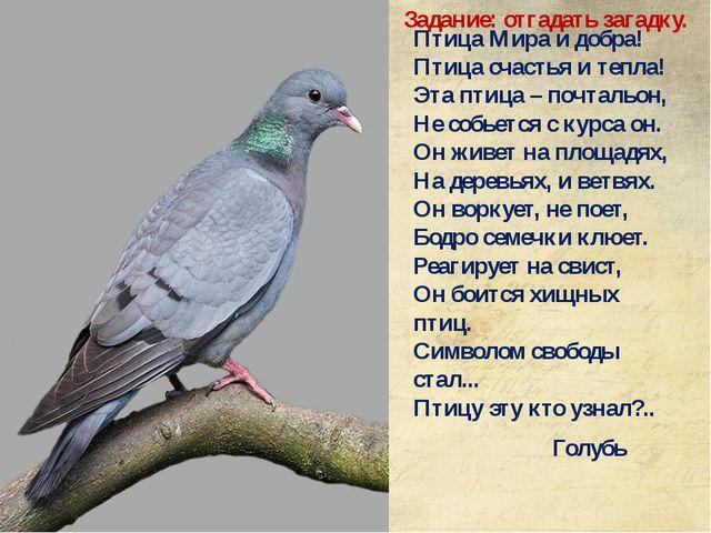 Птица Мира и добра! Птица счастья и тепла! Эта птица – почтальон, Не собьется...