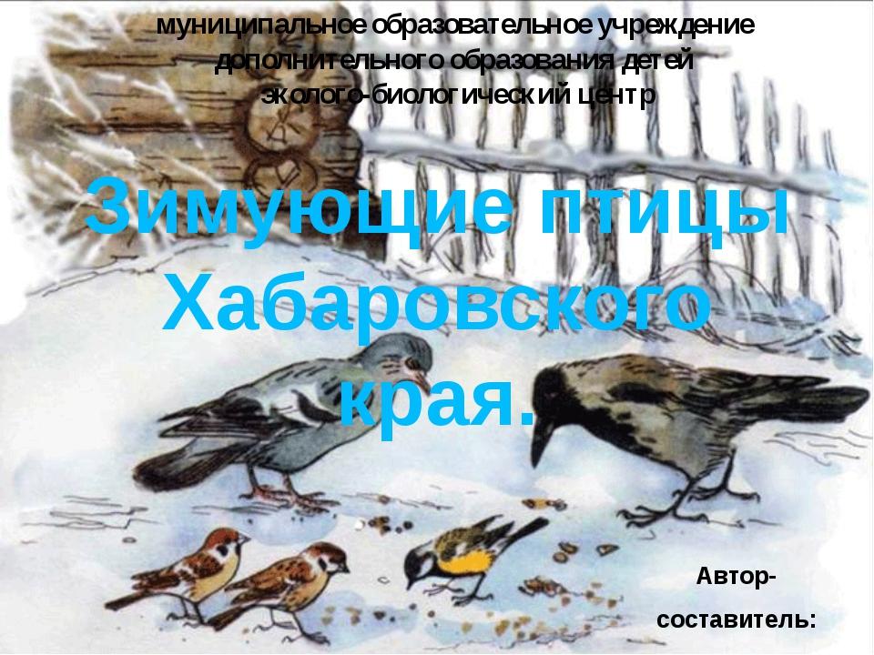 Зимующие птицы Хабаровского края. муниципальное образовательное учреждение до...