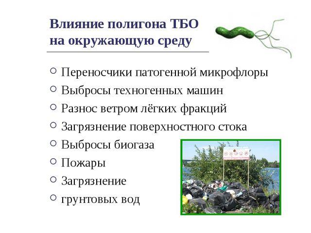 Влияние полигона ТБО на окружающую среду Переносчики патогенной микрофлоры Вы...