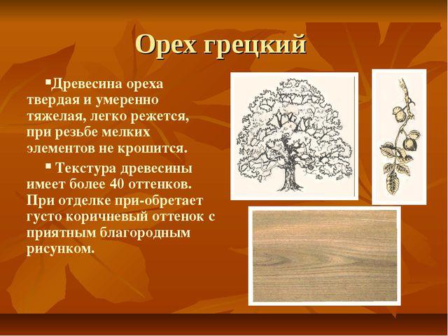 Орех грецкий Древесина ореха твердая и умеренно тяжелая, легко режется, при р...