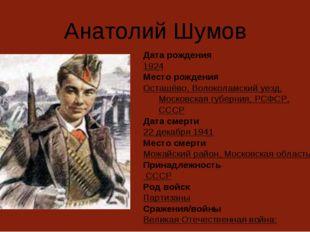 Анатолий Шумов Дата рождения 1924 Место рождения Осташёво, Волоколамский уезд