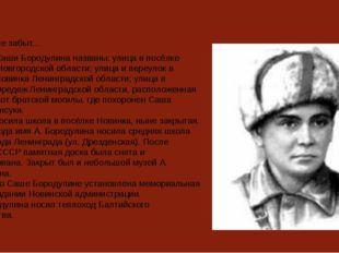 никто не забыт... Именем Саши Бородулина названы: улица в посёлке Крестцы Нов
