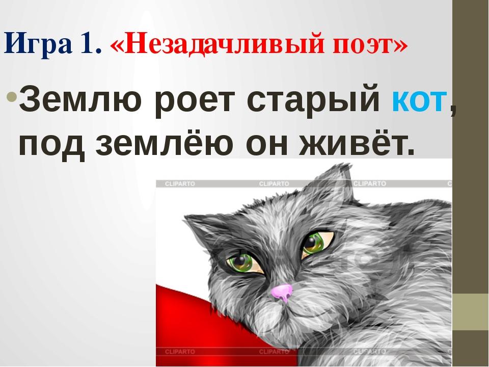 Землю роет старый кот, под землёю он живёт. Игра 1. «Незадачливый поэт»