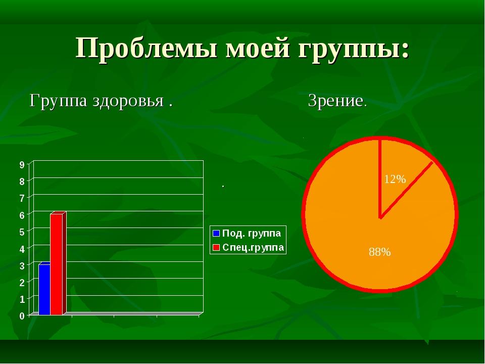 Проблемы моей группы: Группа здоровья . . Зрение. 12% 88%