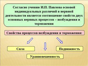 Согласно учению И.П. Павлова основой индивидуальных различий в нервной деятел