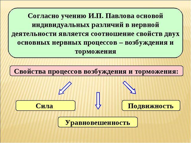 Согласно учению И.П. Павлова основой индивидуальных различий в нервной деятел...